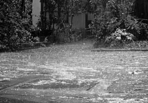 stormtv stormwater management contest