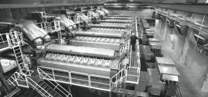 flexible capacity options for renewable integration